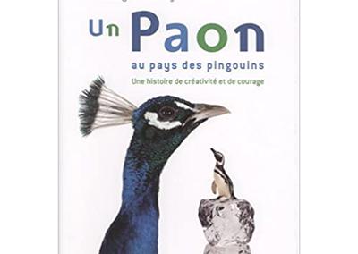 Un paon dans un monde de pingouins